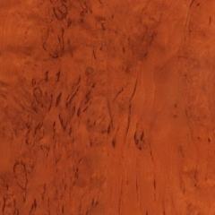 Gintaro spalvos ledinis beržas blizgantis