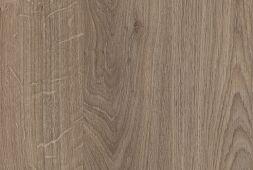 Denverio ąžuolas, rudas triufelis