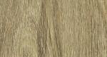 Ąžuolas Džiovani (šakotas)