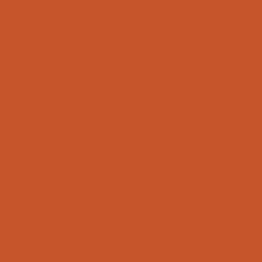 Tamsiai oranžinė